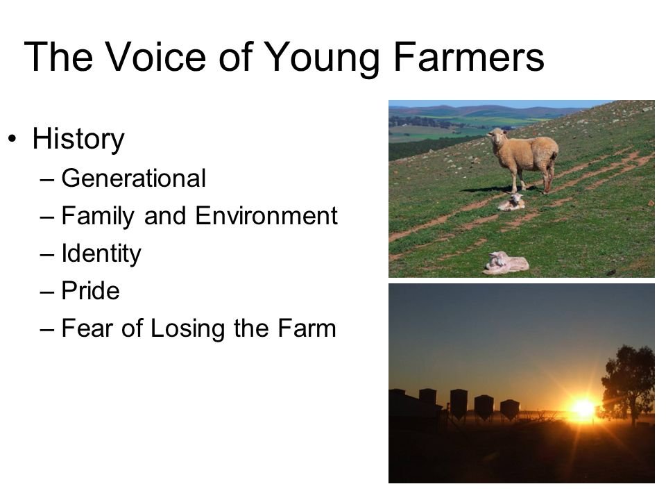 The Voice of Young Farmers History –Generational –Family and Environment –Identity –Pride –Fear of Losing the Farm