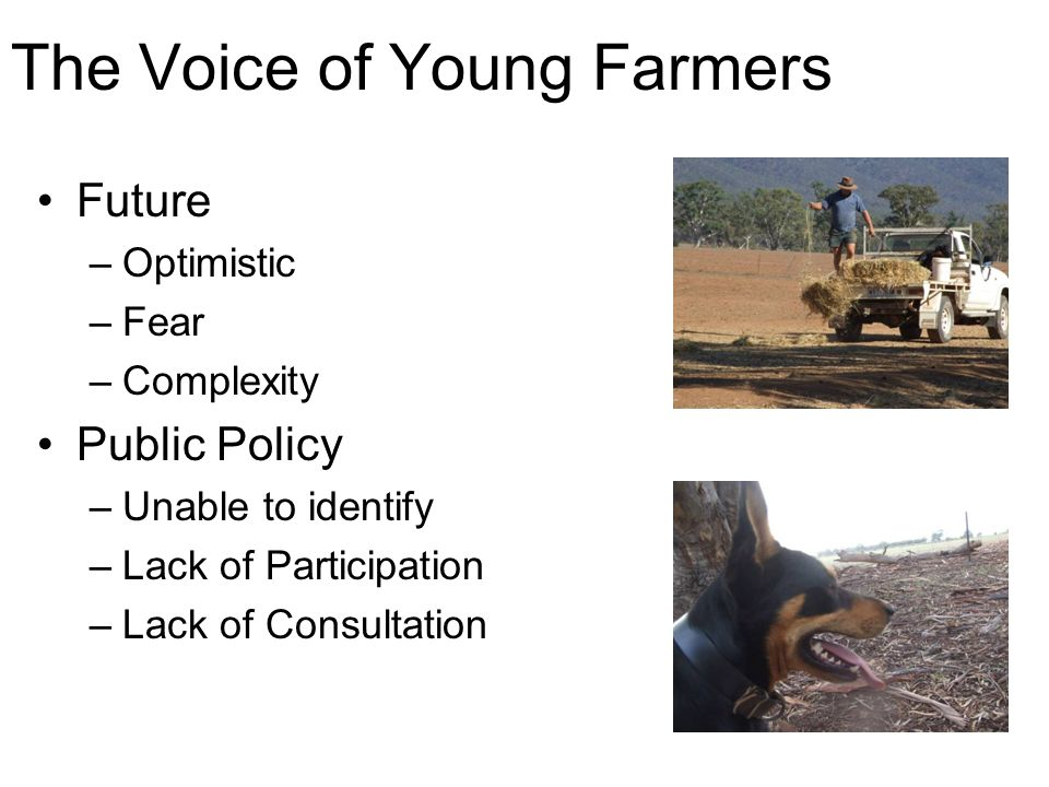 The Voice of Young Farmers Future –Optimistic –Fear –Complexity Public Policy –Unable to identify –Lack of Participation –Lack of Consultation