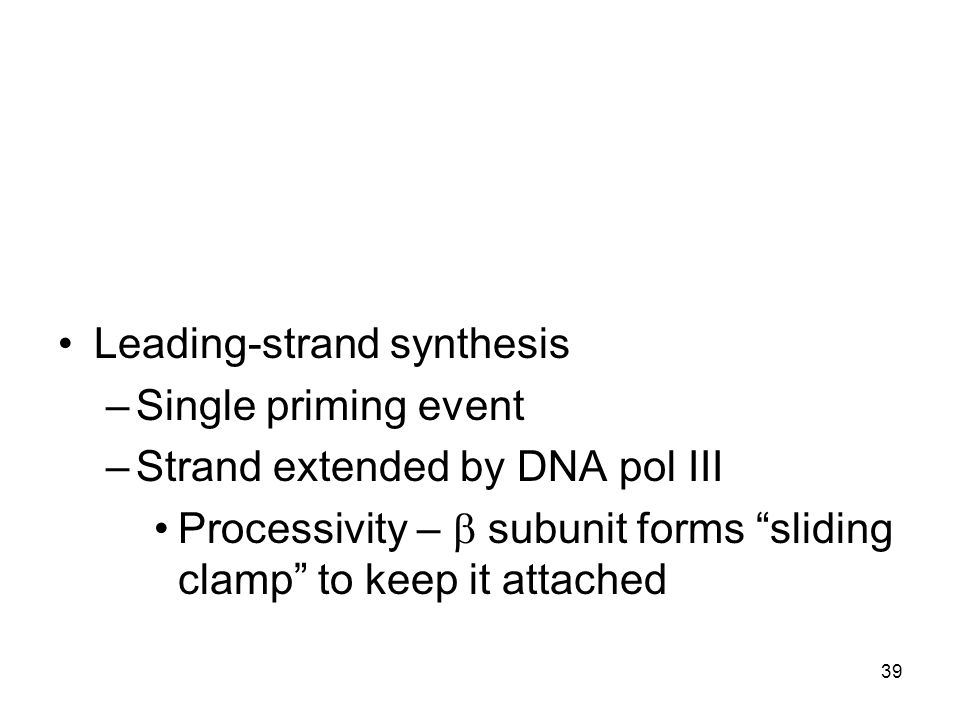 Leading-strand synthesis –Single priming event –Strand extended by DNA pol III Processivity – subunit forms sliding clamp to keep it attached 39