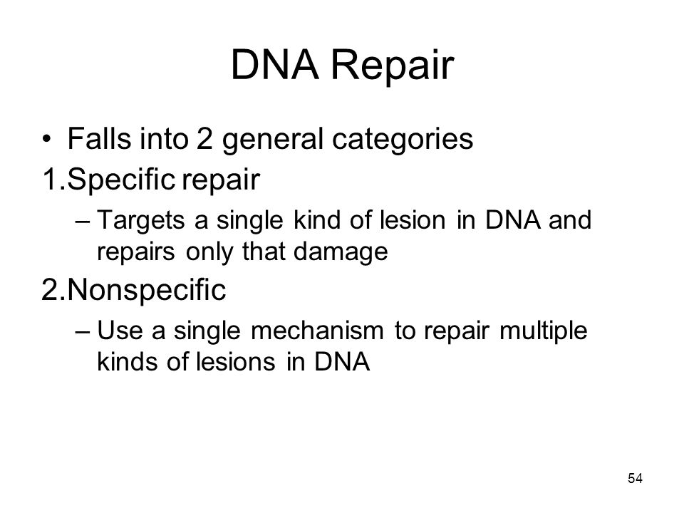 54 DNA Repair Falls into 2 general categories 1.Specific repair –Targets a single kind of lesion in DNA and repairs only that damage 2.Nonspecific –Us