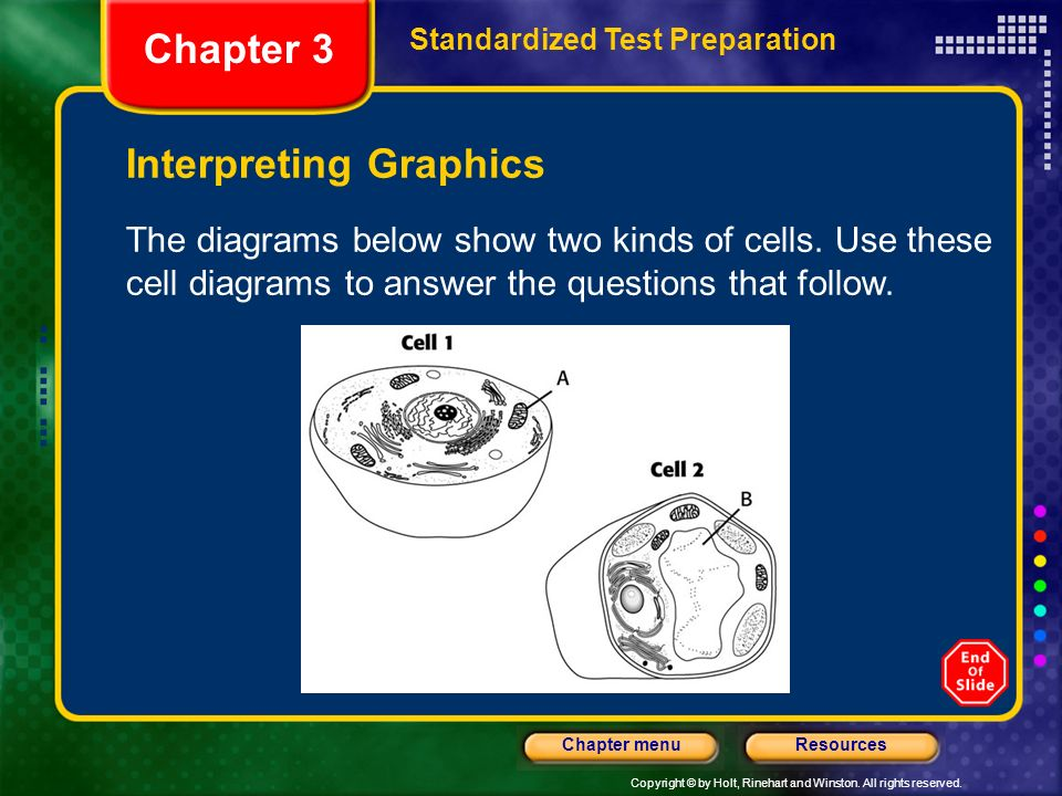 Copyright © by Holt, Rinehart and Winston. All rights reserved. ResourcesChapter menu Interpreting Graphics The diagrams below show two kinds of cells