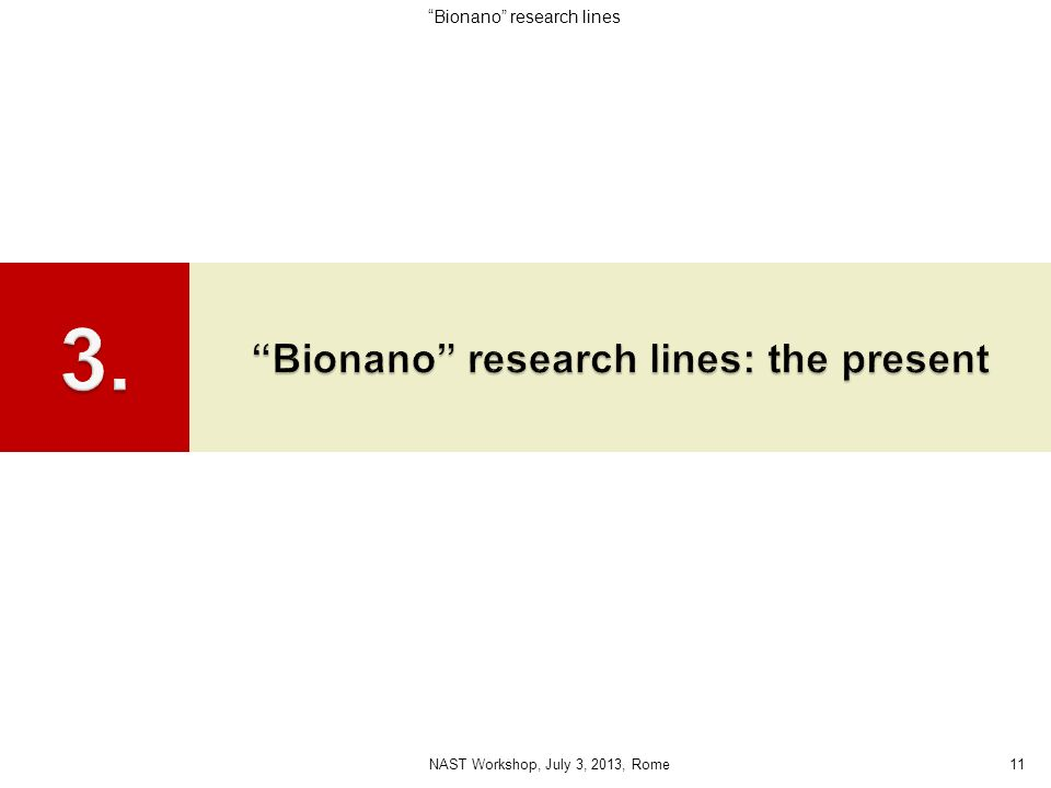 11NAST Workshop, July 3, 2013, Rome Bionano research lines