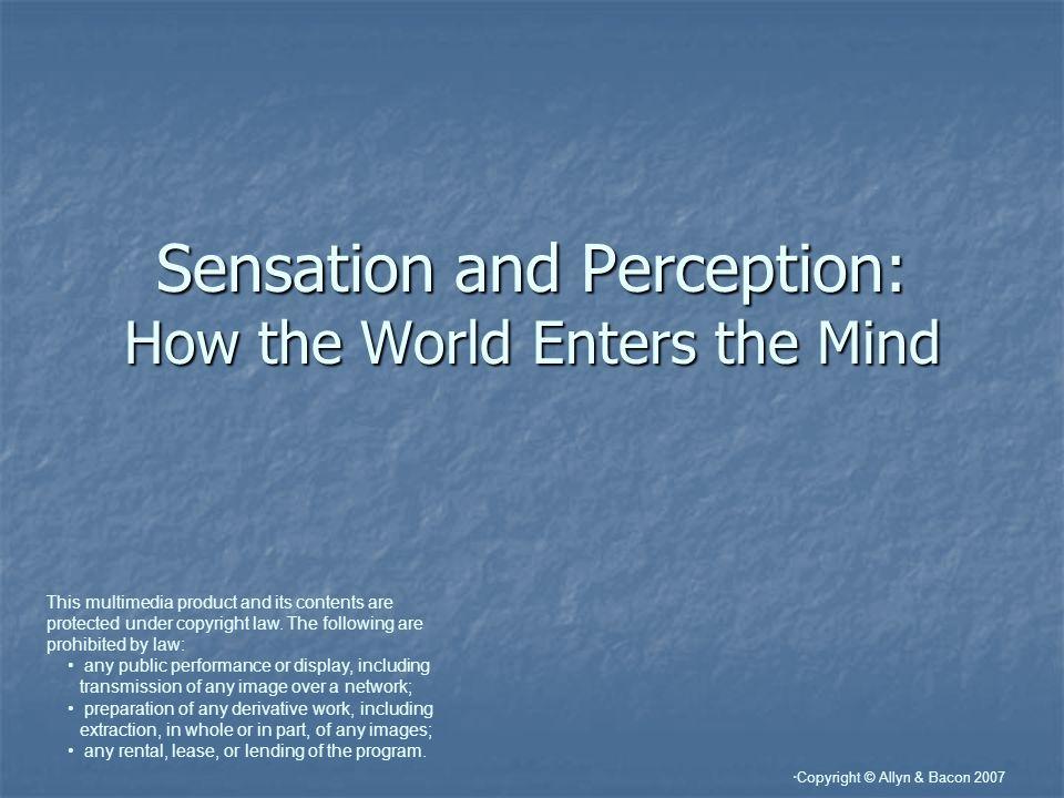 Copyright © Allyn & Bacon 2007 Visual Perception: Pathways Where pathway – parietal lobe What pathway – temporal lobe