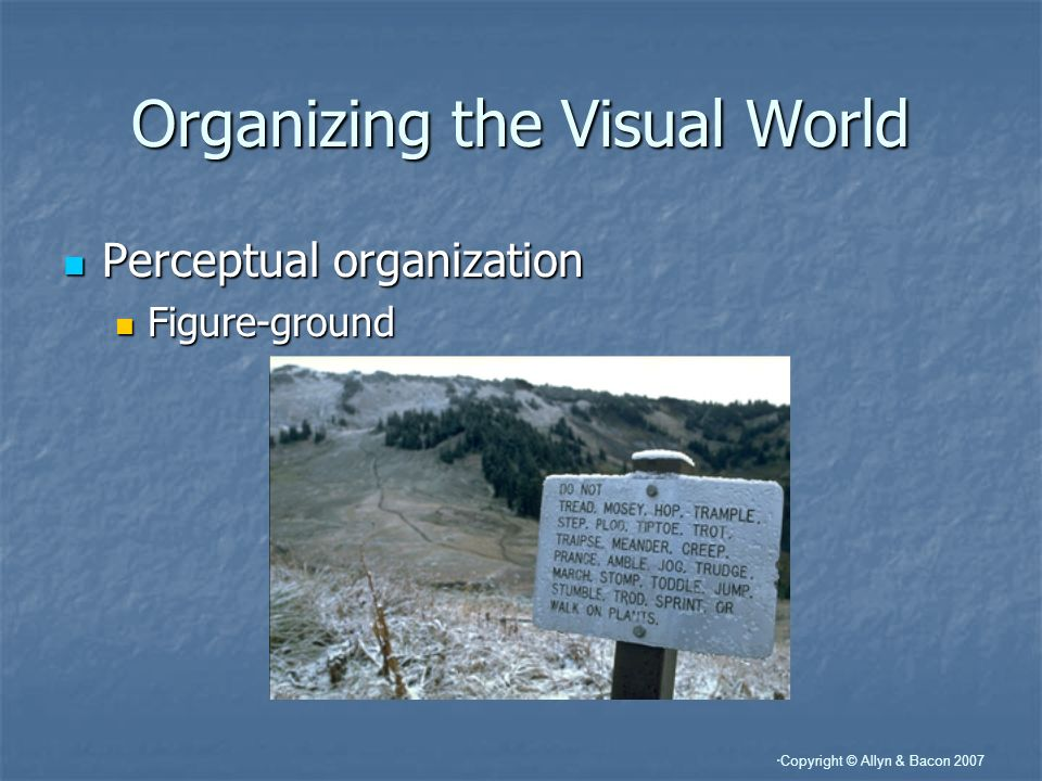 Copyright © Allyn & Bacon 2007 Organizing the Visual World Perceptual organization Perceptual organization Figure-ground Figure-ground