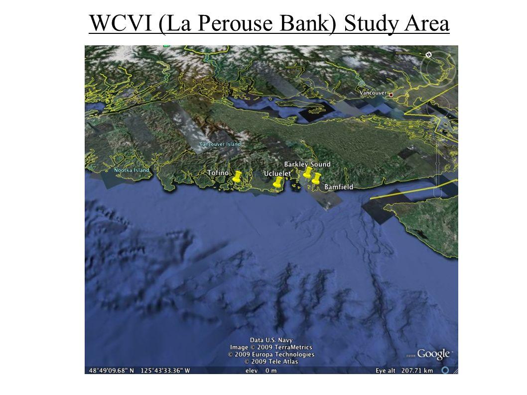 WCVI (La Perouse Bank) Study Area