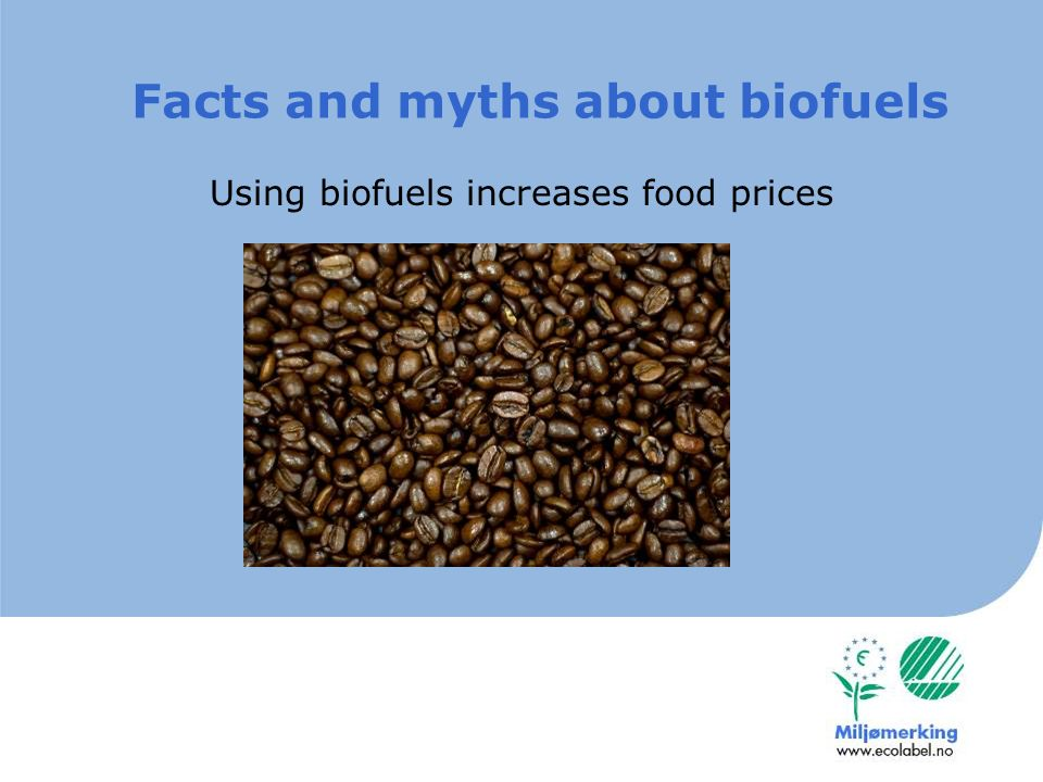 Growing sugarcane destroy the rain forest Facts and myths about biofuels