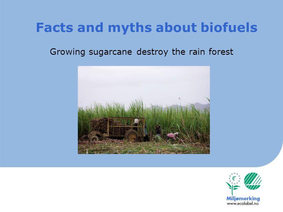 Sugarcane ethanol: unnacceptable transport distance