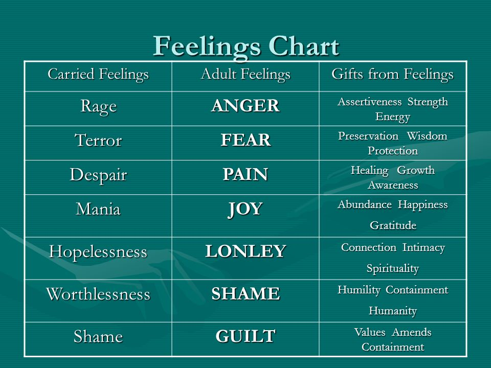Feelings Chart Carried Feelings Adult Feelings Gifts from Feelings RageANGER Assertiveness Strength Energy TerrorFEAR Preservation Wisdom Protection D