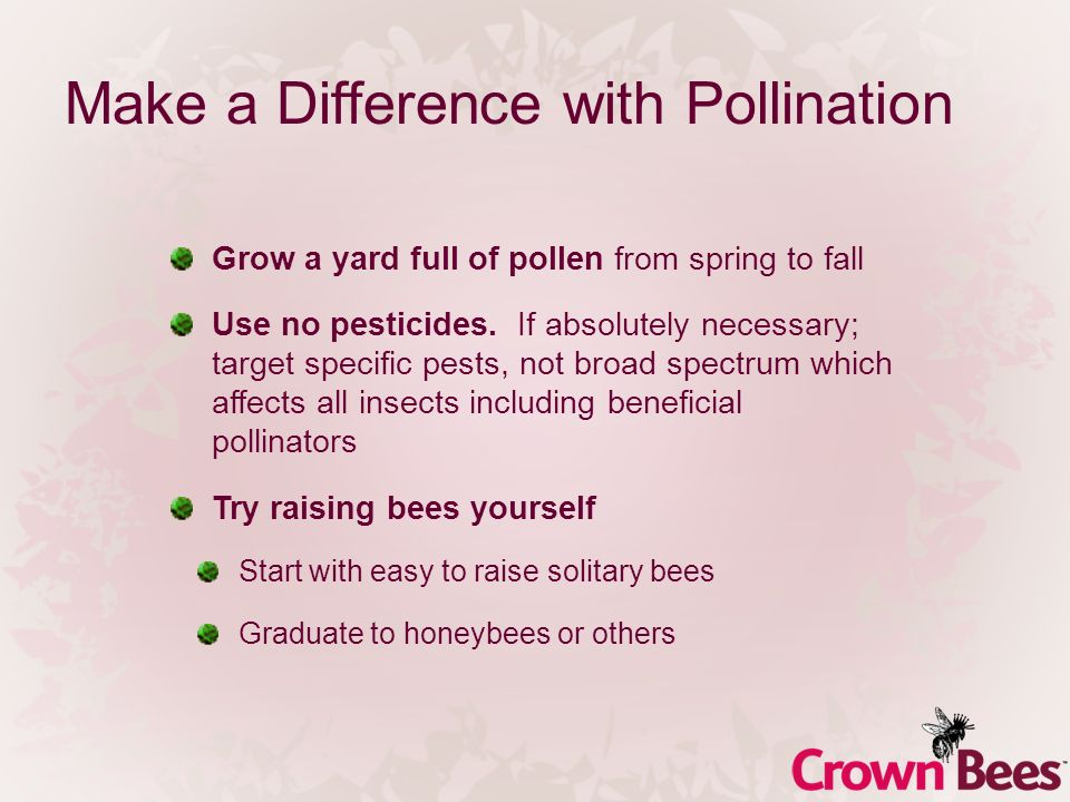 Make a Difference with Pollination Grow a yard full of pollen from spring to fall Use no pesticides. If absolutely necessary; target specific pests, n