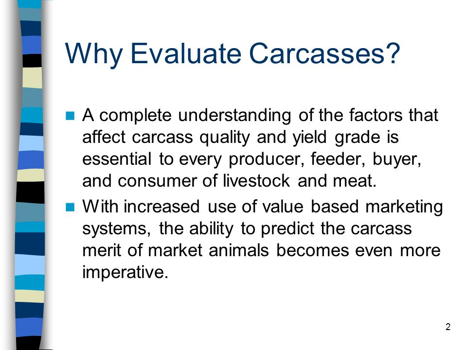 2 Why Evaluate Carcasses? A complete understanding of the factors that affect carcass quality and yield grade is essential to every producer, feeder,