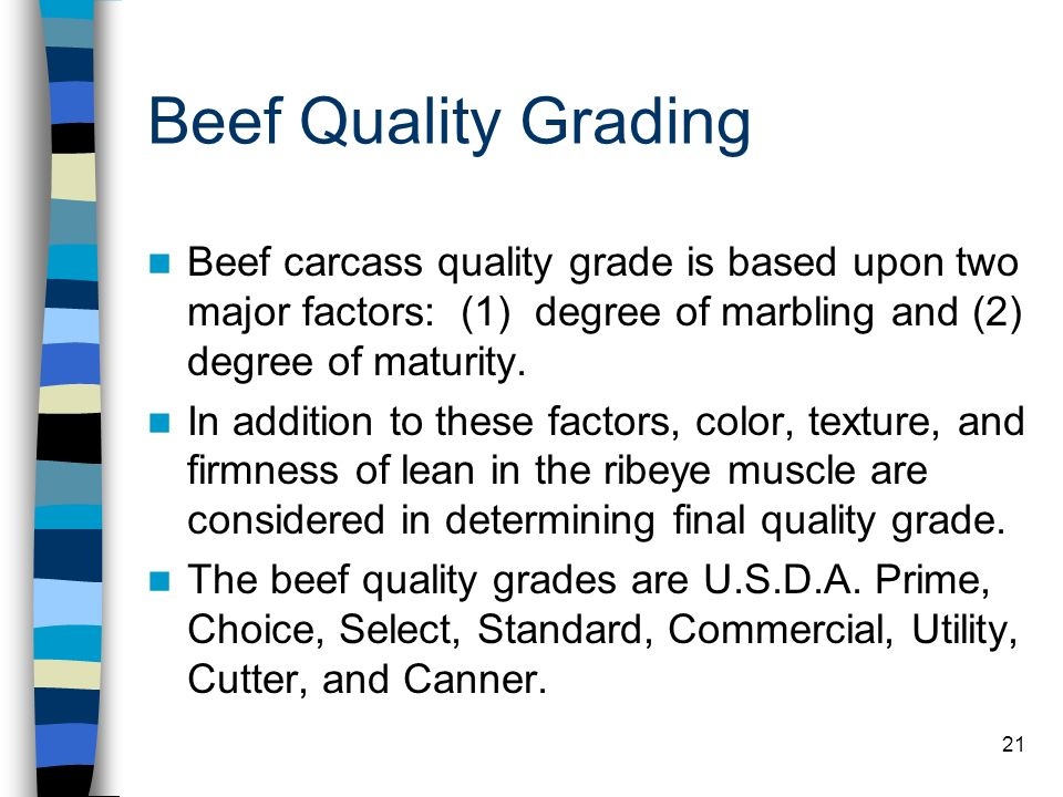 21 Beef Quality Grading Beef carcass quality grade is based upon two major factors: (1) degree of marbling and (2) degree of maturity. In addition to
