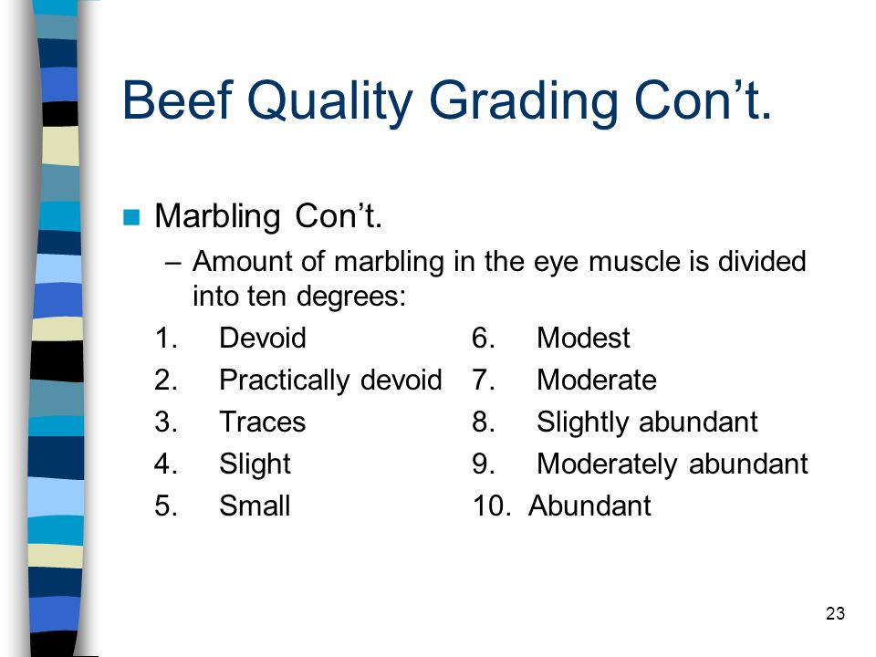 23 Beef Quality Grading Cont. Marbling Cont. –Amount of marbling in the eye muscle is divided into ten degrees: 1. Devoid6. Modest 2. Practically devo