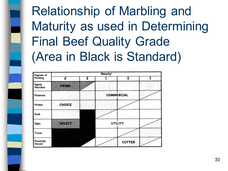 30 Relationship of Marbling and Maturity as used in Determining Final Beef Quality Grade (Area in Black is Standard)