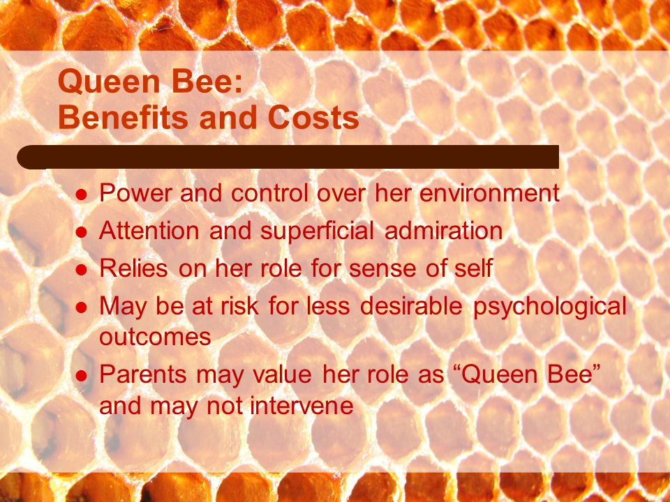 Original material copyright 2008 Dr. April Foreman all rights reserved.