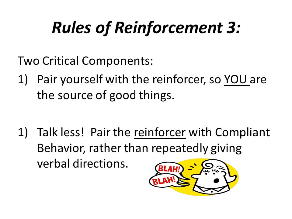 Rules of Reinforcement 3: Two Critical Components: 1)Pair yourself with the reinforcer, so YOU are the source of good things. 1)Talk less! Pair the re