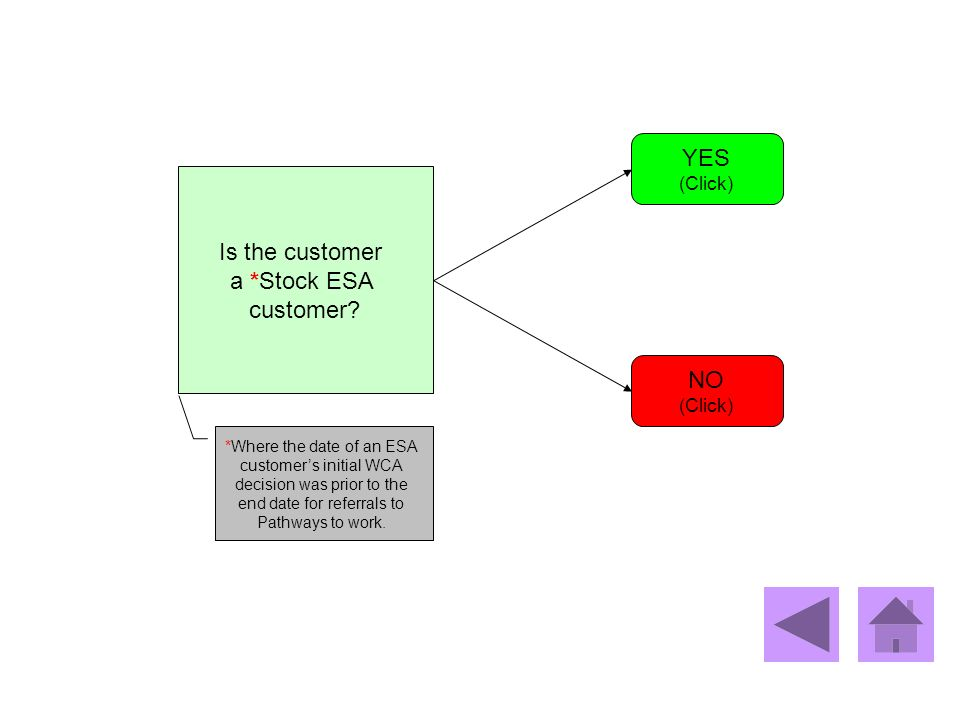 Is the customer a *Stock ESA customer? YES (Click) NO (Click) *Where the date of an ESA customers initial WCA decision was prior to the end date for r