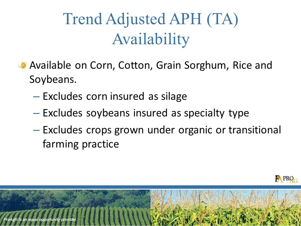 Trend Adjusted APH (TA) Availability Available on Corn, Cotton, Grain Sorghum, Rice and Soybeans.