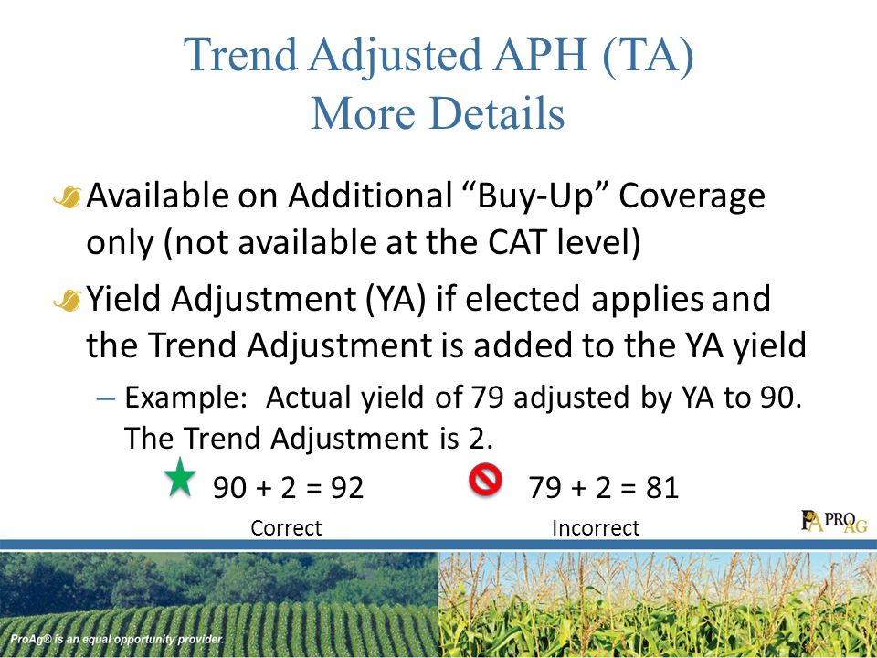 Trend Adjusted APH (TA) More Details Available on Additional Buy-Up Coverage only (not available at the CAT level) Yield Adjustment (YA) if elected applies and the Trend Adjustment is added to the YA yield – Example: Actual yield of 79 adjusted by YA to 90.