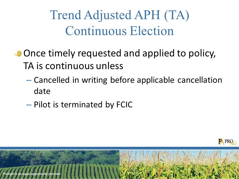 Trend Adjusted APH (TA) Continuous Election Once timely requested and applied to policy, TA is continuous unless – Cancelled in writing before applicable cancellation date – Pilot is terminated by FCIC