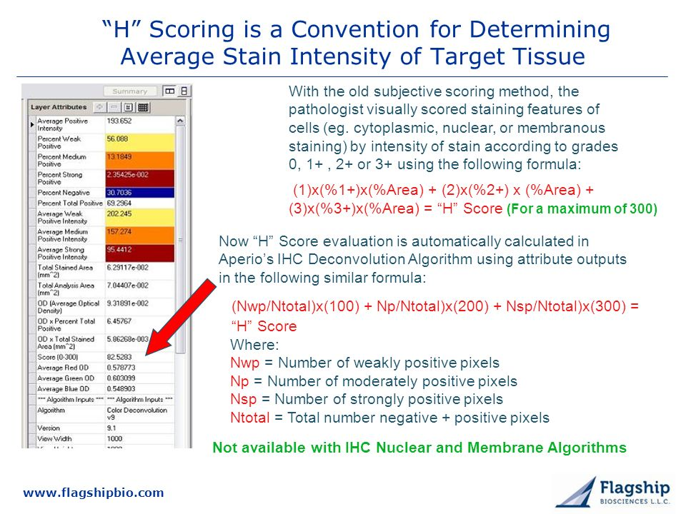 www.flagshipbio.com H Scoring is a Convention for Determining Average Stain Intensity of Target Tissue Now H Score evaluation is automatically calculated in Aperios IHC Deconvolution Algorithm using attribute outputs in the following similar formula: (Nwp/Ntotal)x(100) + Np/Ntotal)x(200) + Nsp/Ntotal)x(300) = H Score Where: Nwp = Number of weakly positive pixels Np = Number of moderately positive pixels Nsp = Number of strongly positive pixels Ntotal = Total number negative + positive pixels With the old subjective scoring method, the pathologist visually scored staining features of cells (eg.