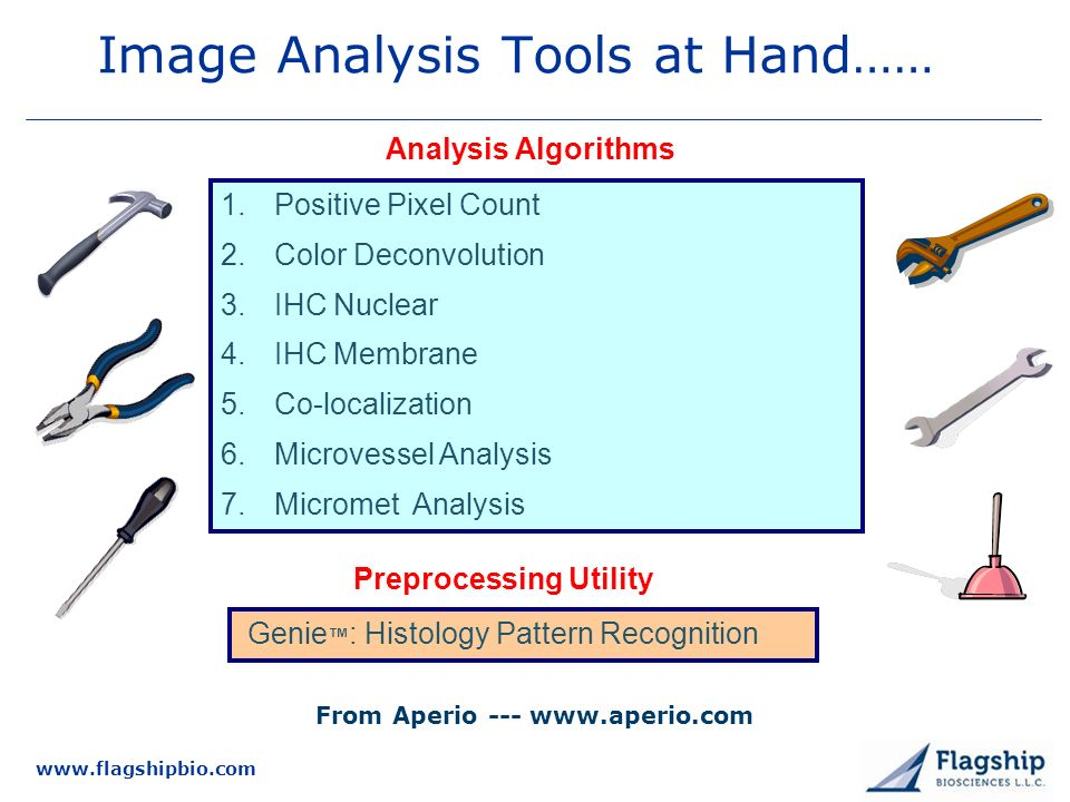 www.flagshipbio.com Image Analysis Tools at Hand…… 1.Positive Pixel Count 2.Color Deconvolution 3.IHC Nuclear 4.IHC Membrane 5.Co-localization 6.Microvessel Analysis 7.Micromet Analysis Genie : Histology Pattern Recognition Analysis Algorithms Preprocessing Utility From Aperio --- www.aperio.com