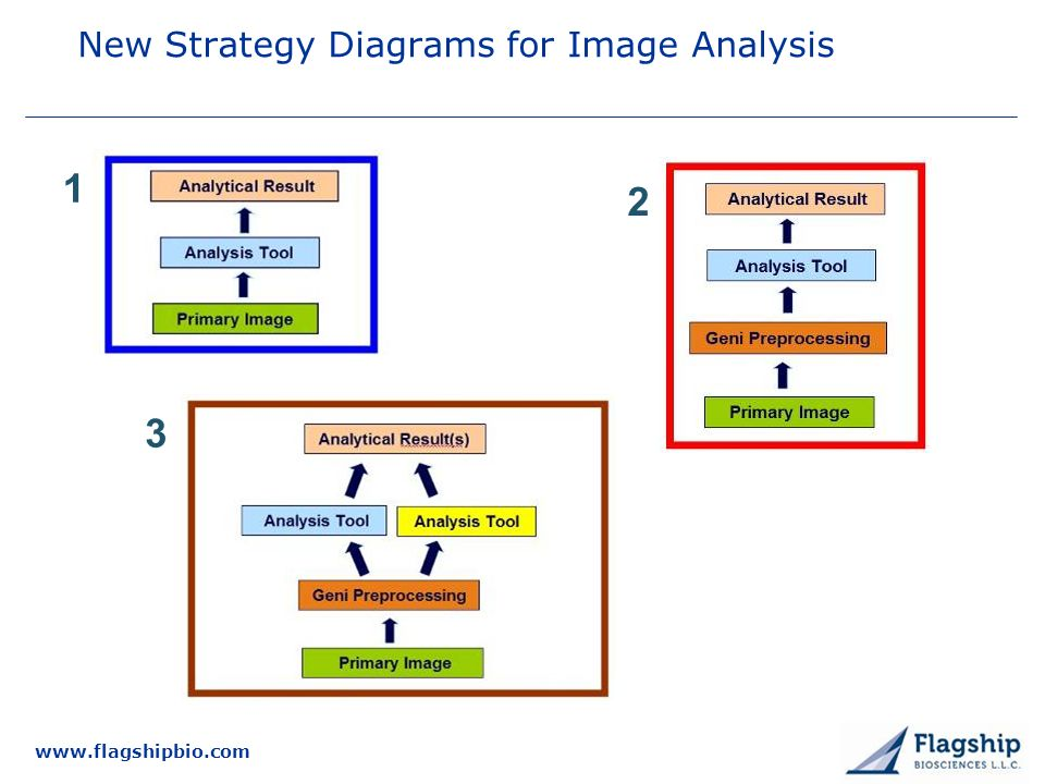www.flagshipbio.com New Strategy Diagrams for Image Analysis 1 2 3