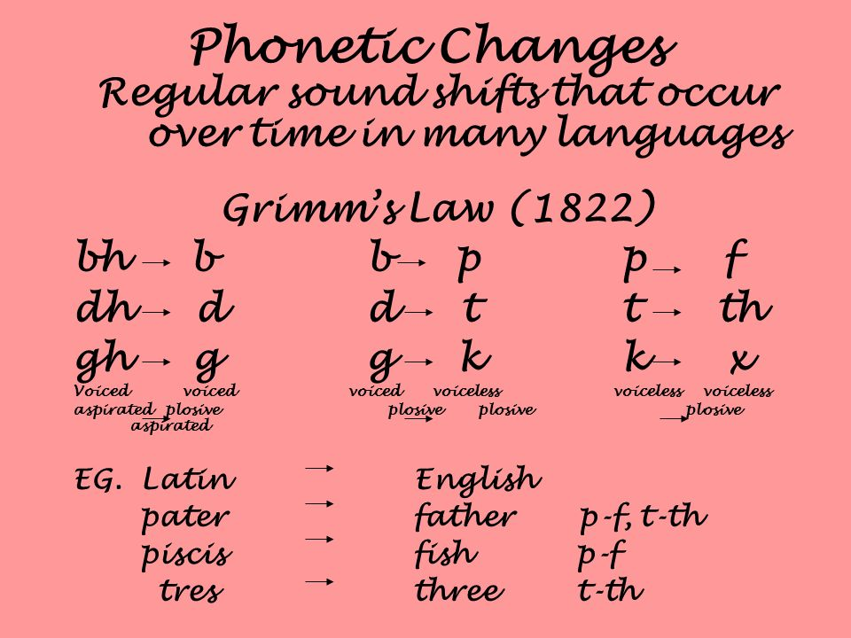 Phonetic Changes Regular sound shifts that occur over time in many languages Grimms Law (1822) bh b b p p f dh d d t t th gh g g k k x Voiced voiced v