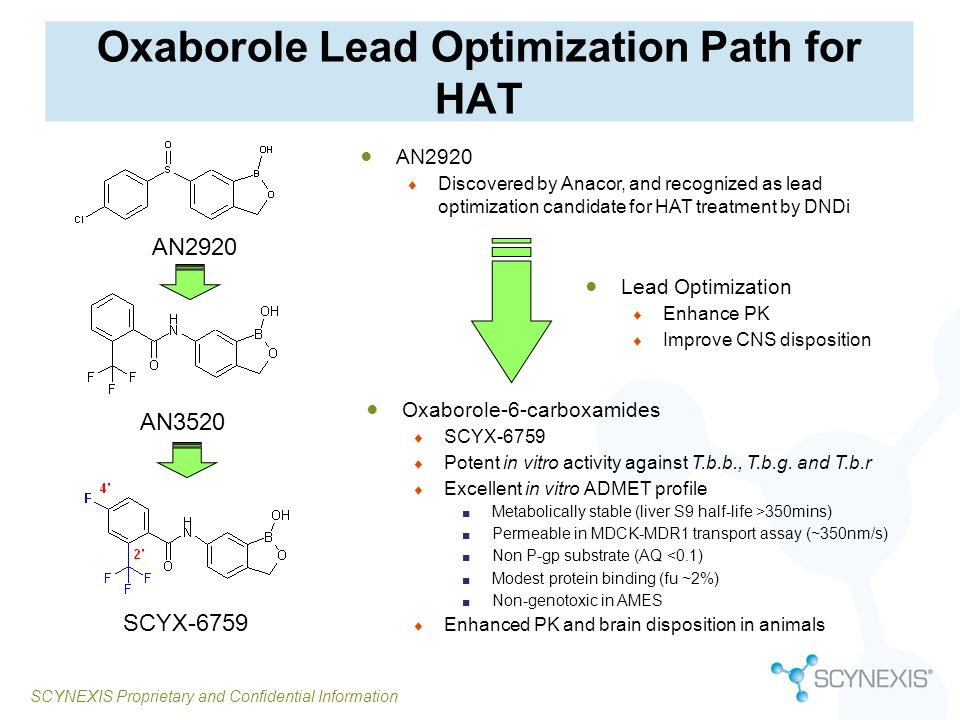 SCYNEXIS Proprietary and Confidential Information Oxaborole Lead Optimization Path for HAT AN3520 SCYX-6759 Oxaborole-6-carboxamides SCYX-6759 Potent