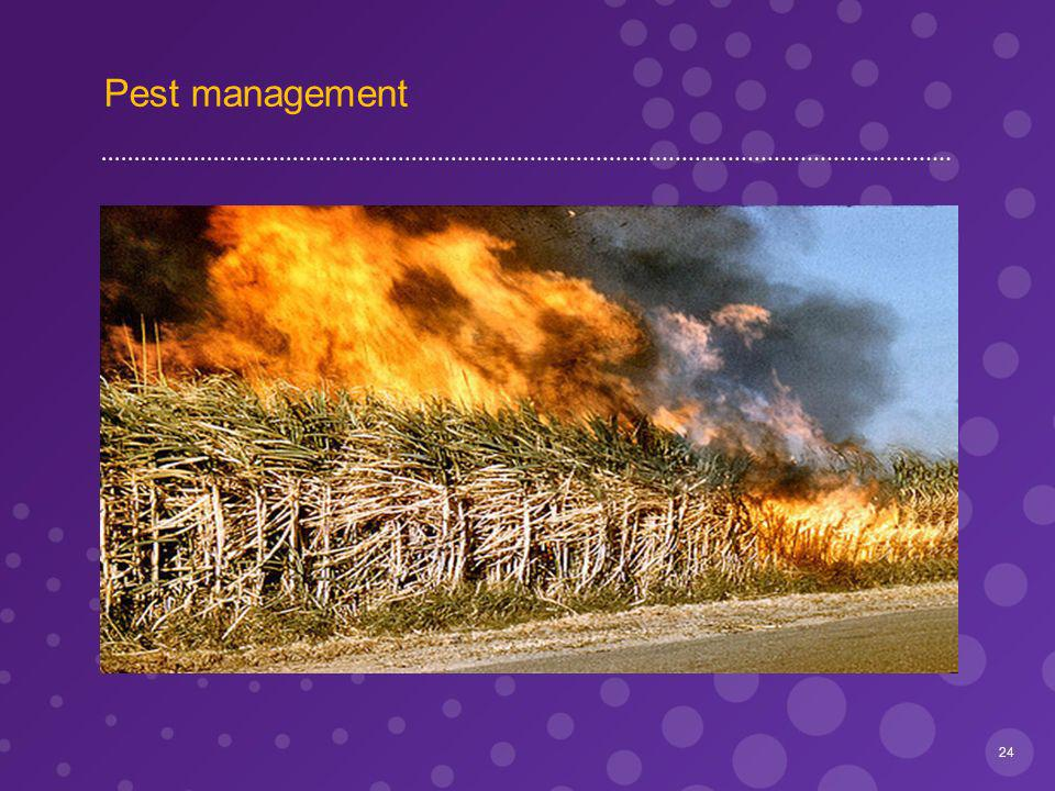 Pest management 24