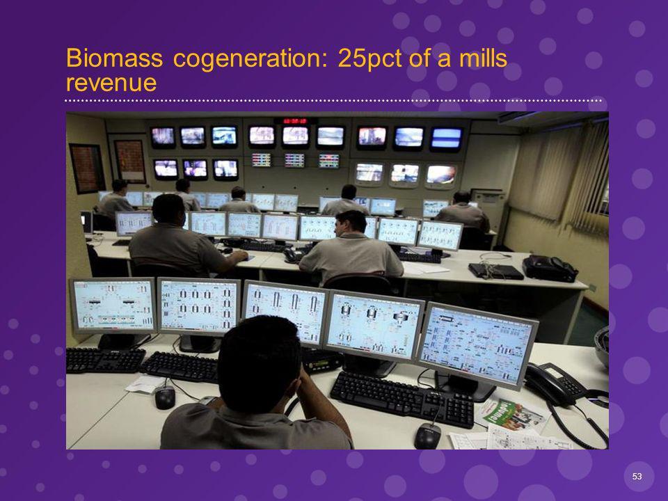 Biomass cogeneration: 25pct of a mills revenue 53