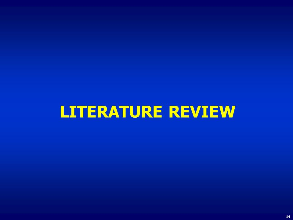 LITERATURE REVIEW 14