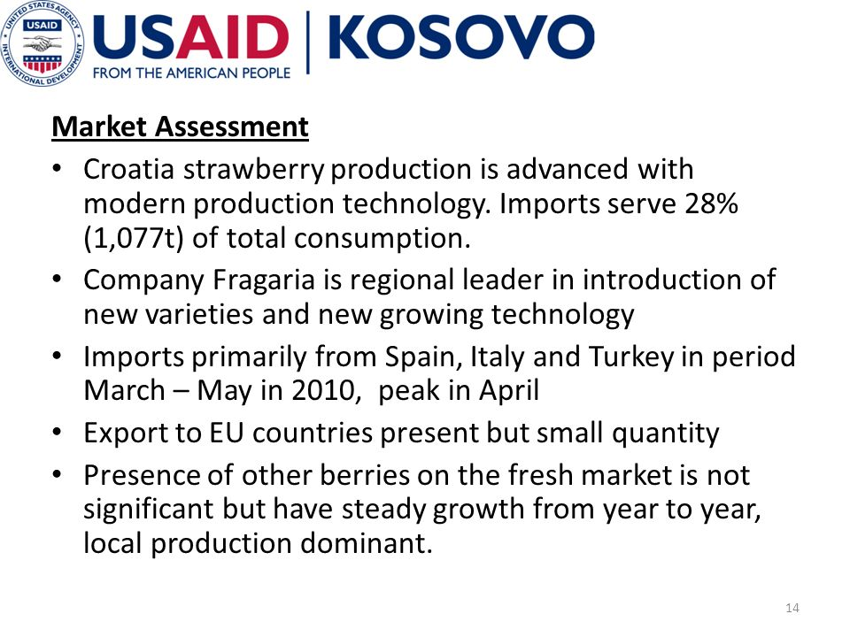 Market Assessment Croatia strawberry production is advanced with modern production technology.
