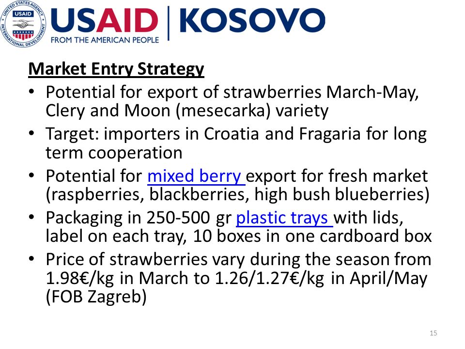 Market Entry Strategy Potential for export of strawberries March-May, Clery and Moon (mesecarka) variety Target: importers in Croatia and Fragaria for long term cooperation Potential for mixed berry export for fresh market (raspberries, blackberries, high bush blueberries)mixed berry Packaging in 250-500 gr plastic trays with lids, label on each tray, 10 boxes in one cardboard boxplastic trays Price of strawberries vary during the season from 1.98/kg in March to 1.26/1.27/kg in April/May (FOB Zagreb) 15