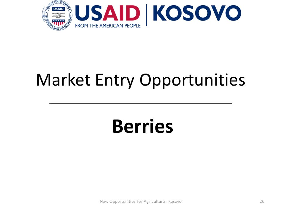 Market Entry Opportunities Berries 26New Opportunities for Agriculture - Kosovo