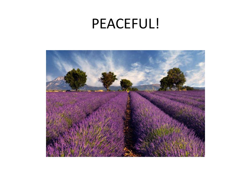 PEACEFUL!