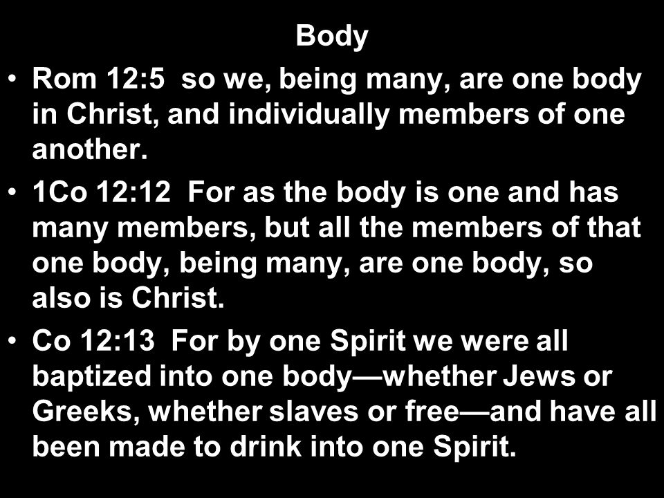 Body Rom 12:5 so we, being many, are one body in Christ, and individually members of one another. 1Co 12:12 For as the body is one and has many member