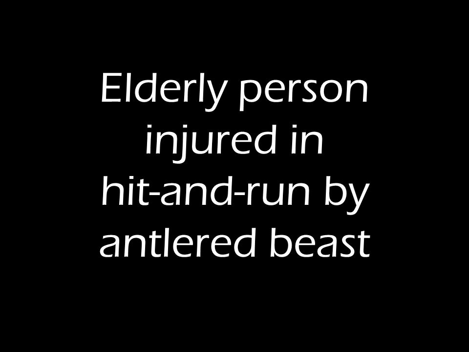 Elderly person injured in hit-and-run by antlered beast