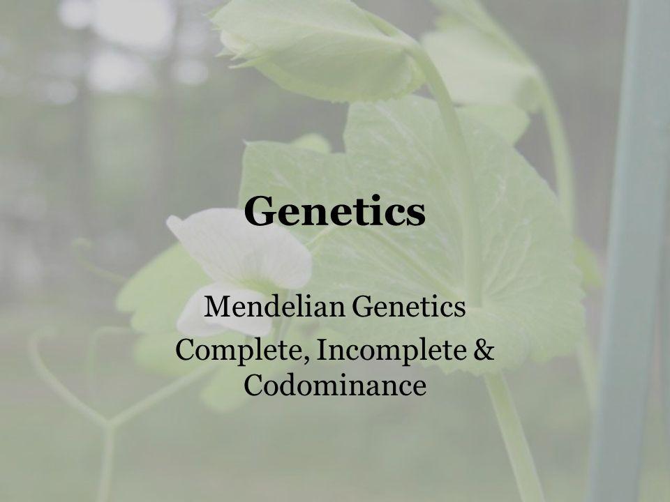 Genetics Mendelian Genetics Complete, Incomplete & Codominance