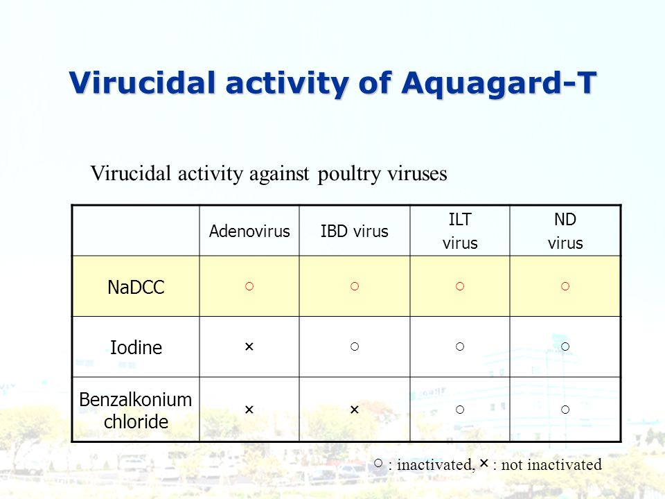 AdenovirusIBD virus ILT virus ND virus NaDCC Iodine× Benzalkonium chloride ×× Virucidal activity of Aquagard-T Virucidal activity against poultry viru