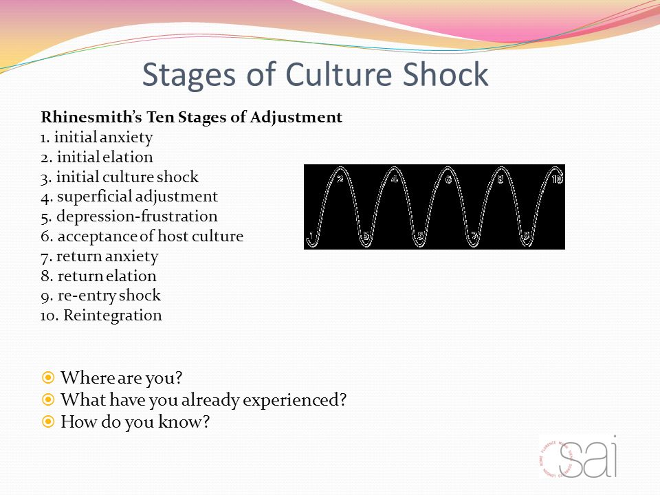 Stages of Culture Shock Rhinesmiths Ten Stages of Adjustment 1.