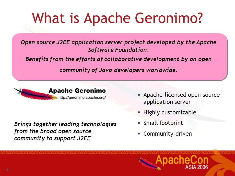 3 Geronimo - An Introduction