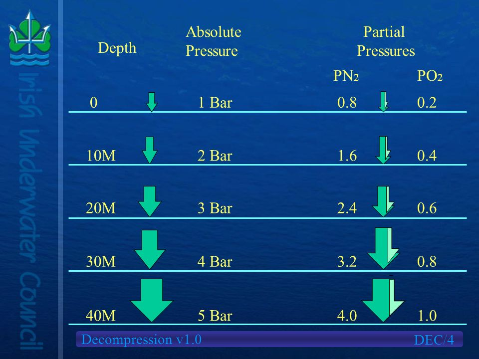 Decompression v1.0 Depth Absolute Pressure Partial Pressures 0 10M 20M 30M 40M 1 Bar0.80.2 2 Bar1.60.4 3 Bar2.40.6 4 Bar3.20.8 PN 2 PO 2 5 Bar4.01.0 DEC/4