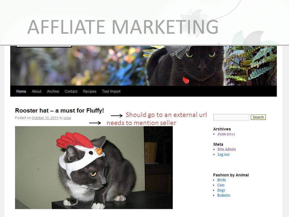 AFFLIATE MARKETING Should go to an external url needs to mention seller