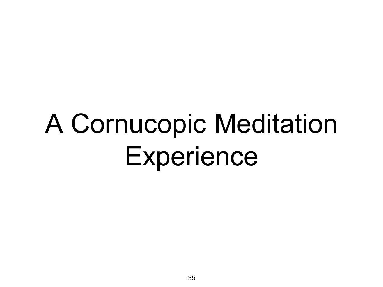 35 A Cornucopic Meditation Experience