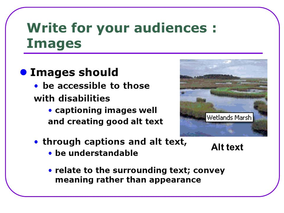 Write for your audiences : Images Images should be accessible to those with disabilities captioning images well and creating good alt text through captions and alt text, be understandable relate to the surrounding text; convey meaning rather than appearance Alt text