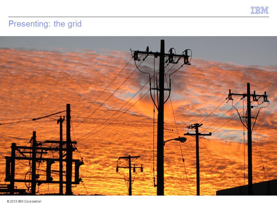 © 2012 IBM Corporation IBM Security Systems 3 © 2013 IBM Corporation Presenting: the grid