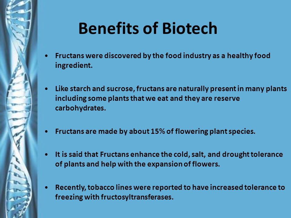 Benefits of Biotech Fructans were discovered by the food industry as a healthy food ingredient.