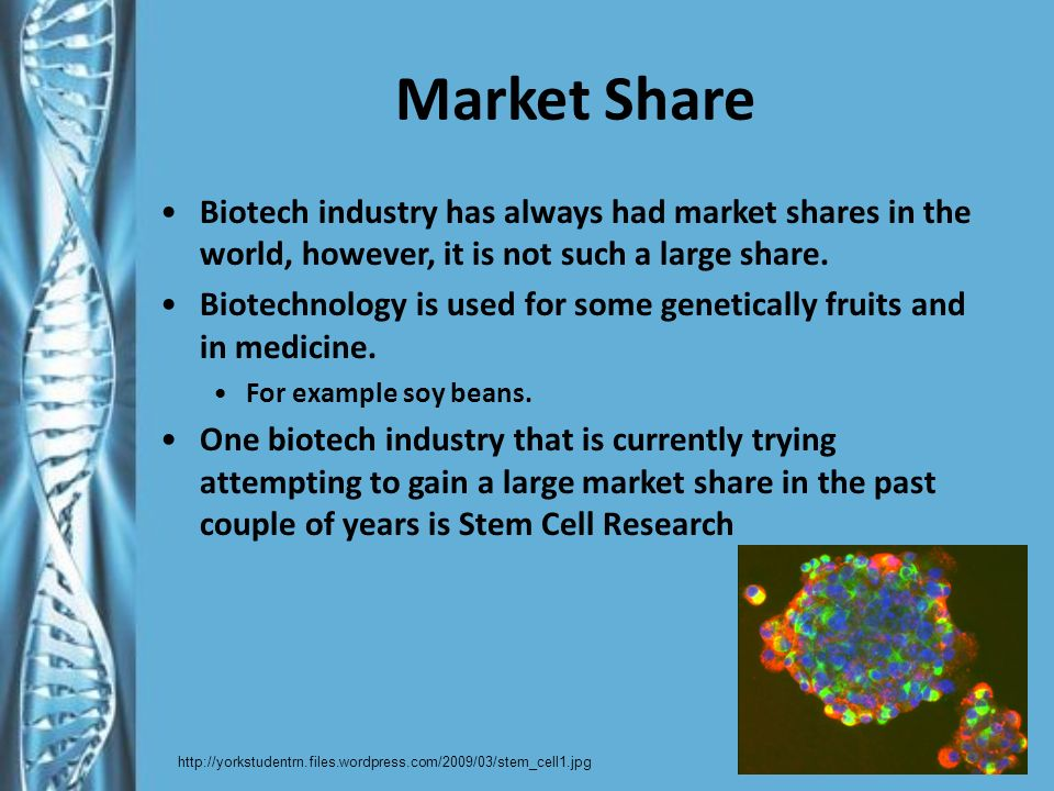 Market Share Biotech industry has always had market shares in the world, however, it is not such a large share.