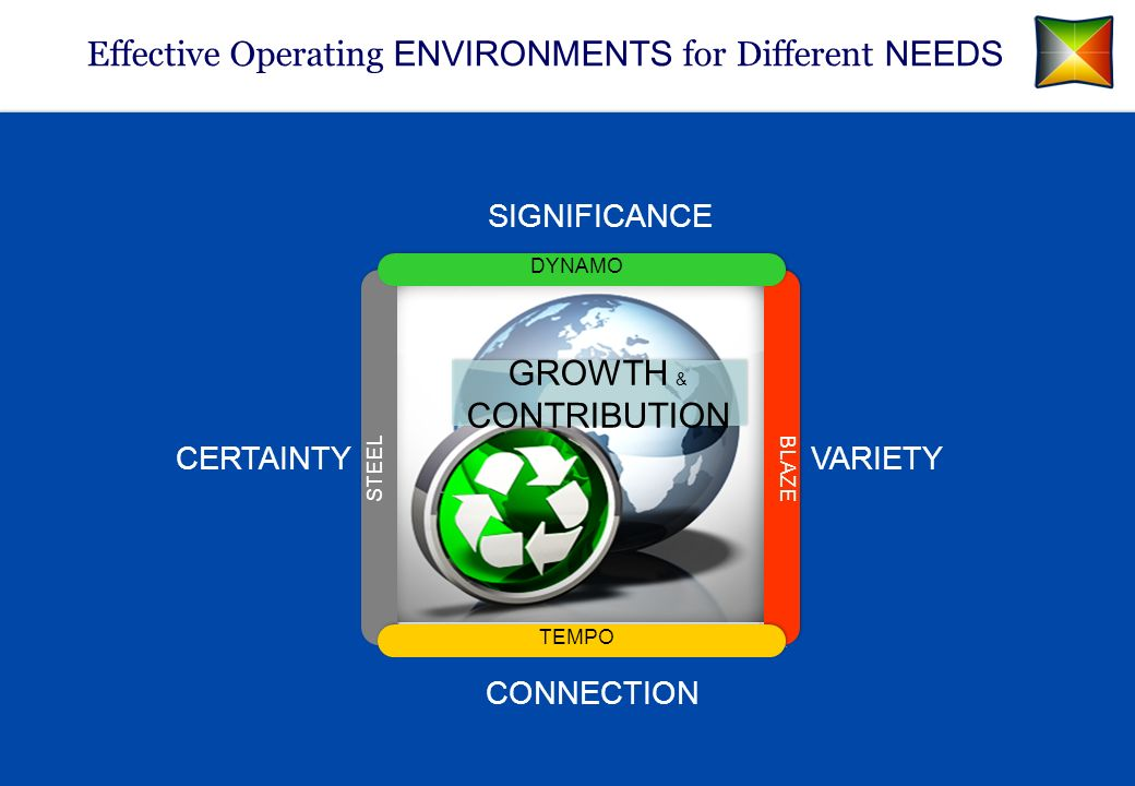 Effective Operating ENVIRONMENTS for Different NEEDS SIGNIFICANCE CERTAINTY CONNECTION VARIETY GROWTH & CONTRIBUTION TEMPO BLAZE DYNAMO STEEL