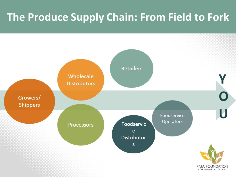 The Produce Supply Chain: From Field to Fork YOUYOU Growers/ Shippers Wholesale Distributors Processors Retailers Foodservic e Distributor s Foodservi